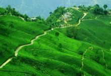 Darjeeling Tour Package from Bangladesh (4D,3N)