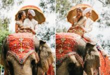 Elephant or Haati Rent in Dhaka,Bangladesh