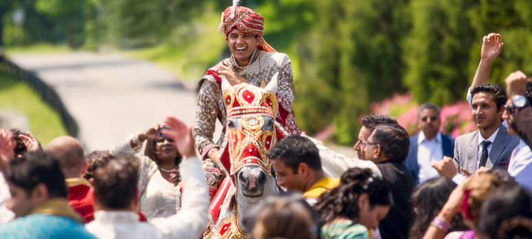 Horse Ghora Rental in Dhaka for Events