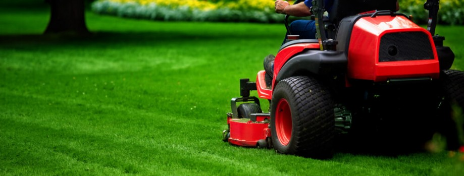 Residential And Commercial Landscaping Services In Dhaka
