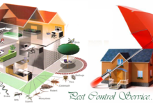 Pest Control Companies in BD