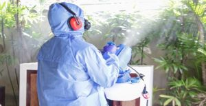 Disinfection Spraying Service in Dhaka